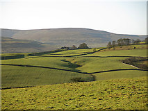 NY9539 : View from Ashy Bank towards Chapelfell Top by Mike Quinn
