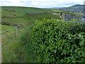 SN0541 : Pembrokeshire Coast Path at Newport Bay by Mat Fascione