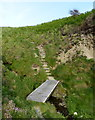 SN0541 : Footbridge and steps along the Pembrokeshire Coast Path by Mat Fascione