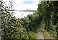 SN0539 : Pembrokeshire Coast Path along the Afon Nyfer by Mat Fascione