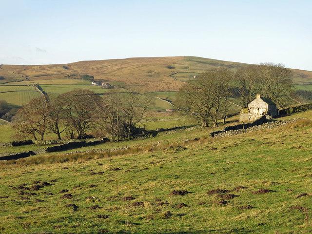 Rough pastures between Shepherd's House and Shepherd's Cottage