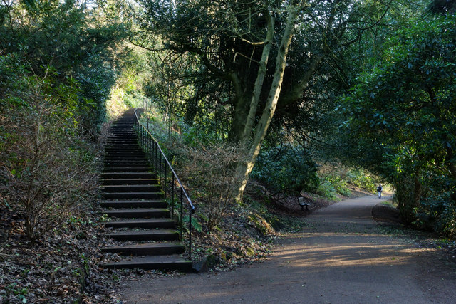 Path and steps in Jesmond Dene