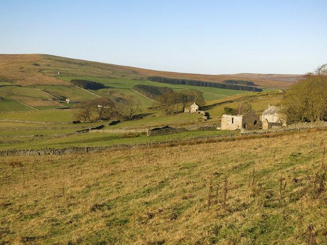 Rough pastures around Shepherd's House