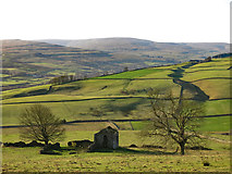 NY9539 : The lower Rookhope valley around Broad Bush by Mike Quinn