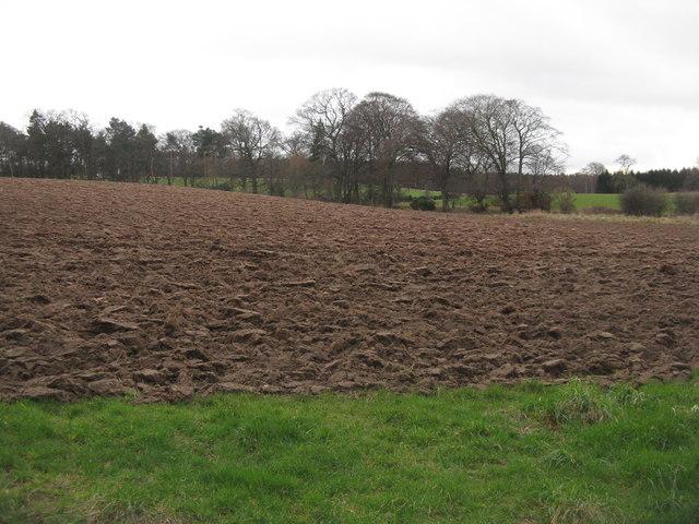 East Lothian farmland