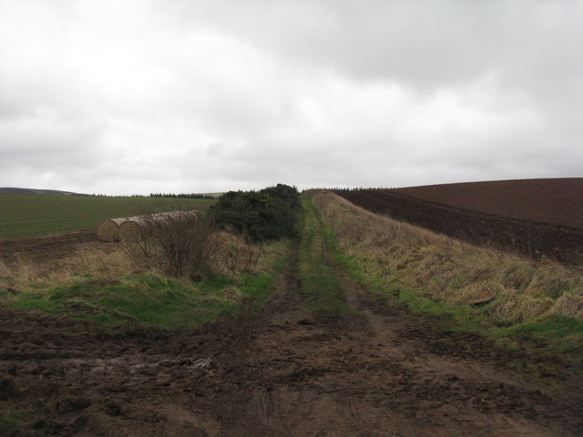 Track to Garvald from Chesters crossroads