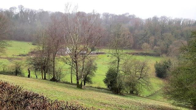Winter at Bull's Hill