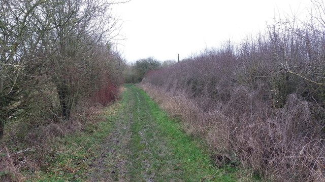 Path to Bulbourne