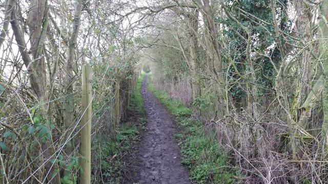Path towards Helsthorpe Farm