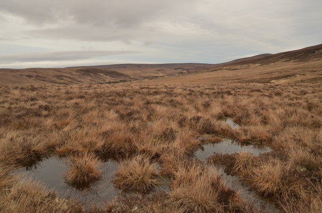 Moorland West of Cnoc Salislade, Kildonan, Sutherland