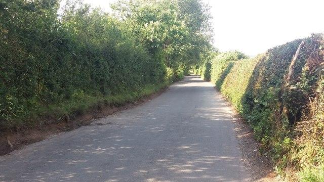 Trenchards Road heading to Oakley