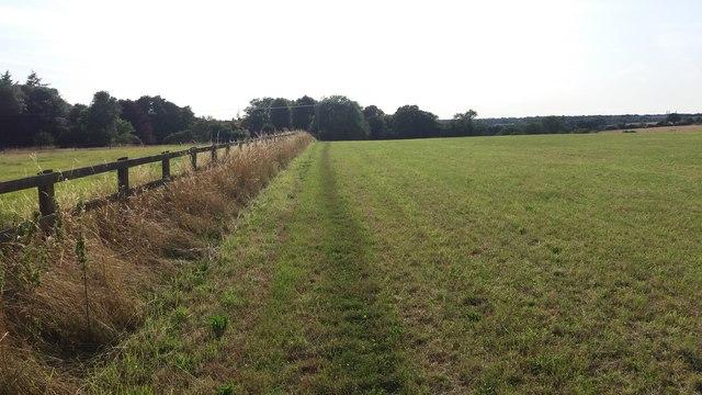 Path heading towards Ashe