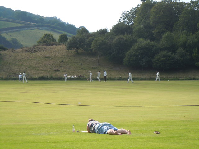 Criced Bronwydd Arms cricket