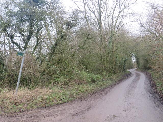 Country lane near Furneux Pelham
