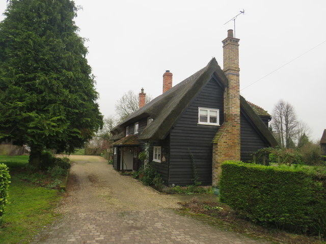 Thatched cottages at East End, near Furneux Pelham