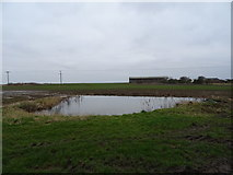 TA3719 : Pond near Skeffling by JThomas