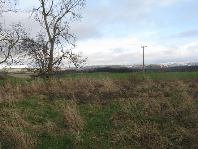 Farmland at Latch