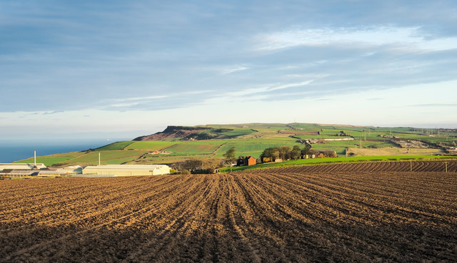 Ploughed field south of Brotton