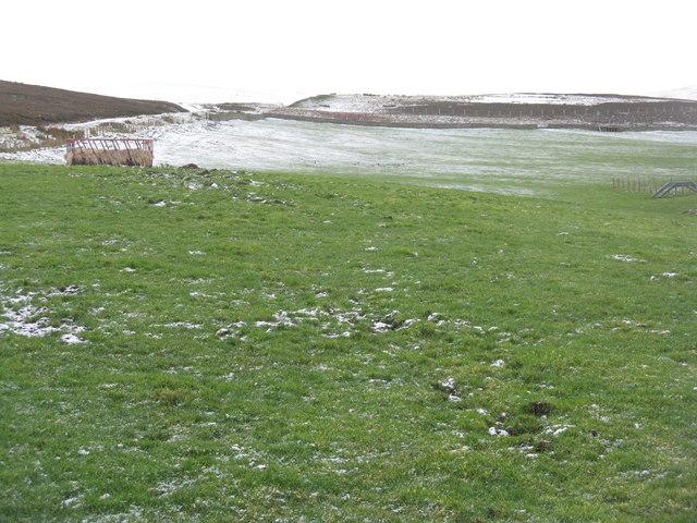 Upland grazing near Longyester