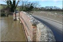 TQ5203 : Lullington Lane crossing Long Bridge by Peter Jeffery