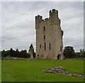 SE6183 : Helmsley Castle by habiloid