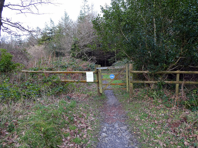 Gateway on the path into Canaston Wood