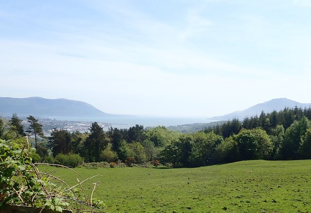 View across a borderland meadow to woodland in the Irish Republic