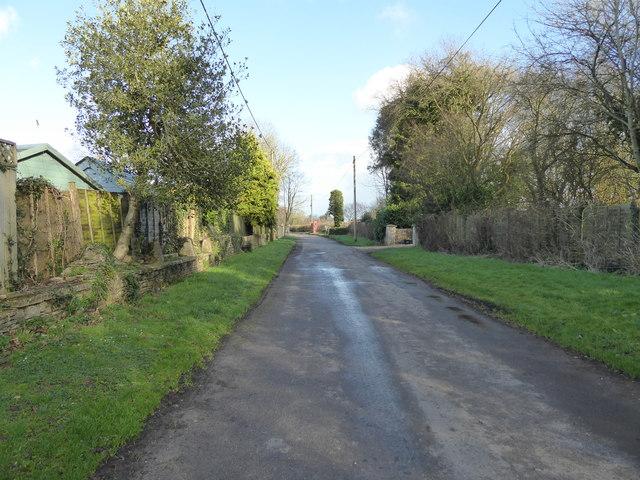 Lane near Milbourne Farm