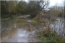 SZ0995 : River Stour flooding over the Stour Valley Way at Muscliffe by David Martin
