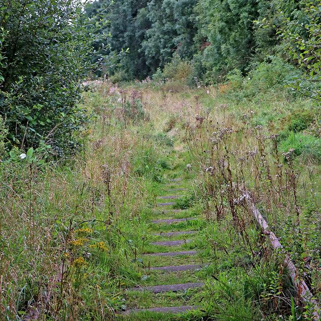 Disused railway track near Endon Bank, Staffordshire