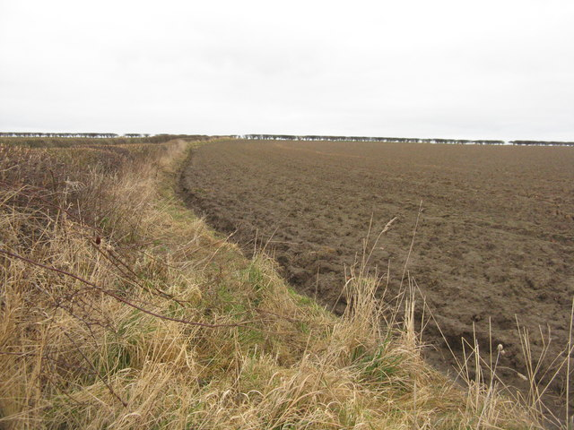 Ploughed field, East Lothian