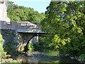 NN7801 : Dunblane Bridge by Stephen Craven