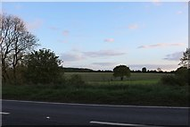 SP7345 : Fields by the A5, Paulerspury by David Howard