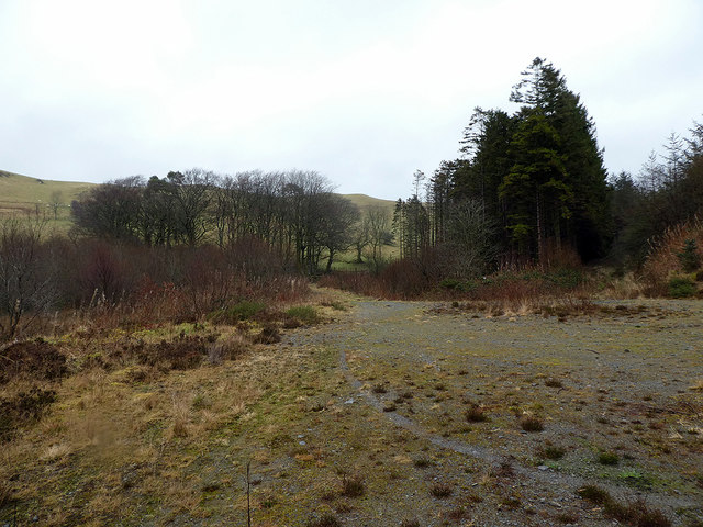 Forestry road turning area