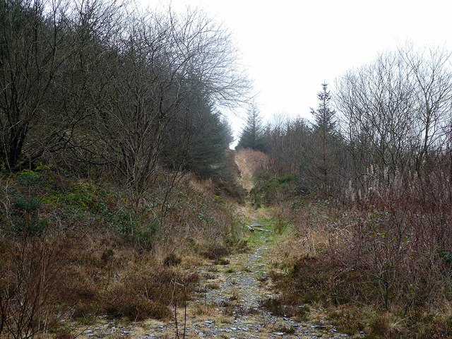 Path continuing towards Rhos-cyrnau and the B4343 road