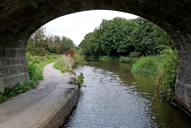 Caldon Canal at Plant's Bridge near Hazelhurst Junction, Staffordshire