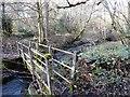 NZ1048 : Footbridge in the wood by Robert Graham
