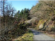 SN7079 : Forest track in Coed Dolfawr by John Lucas