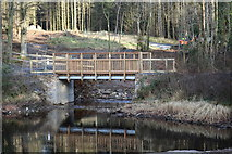 NX4465 : Bridge leading to the Gem Stane, Kirroughtree Forest by Billy McCrorie