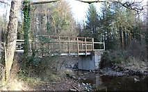 NX4465 : Bridge at Bruntis Loch, Kirroughtree Forest by Billy McCrorie