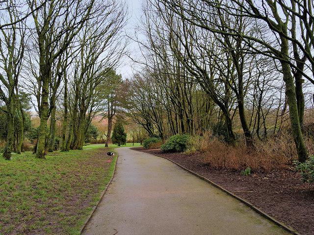 Path in Devonshire Road Rock Gardens