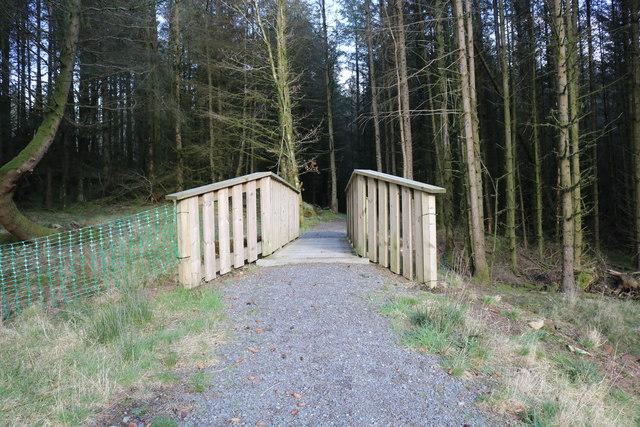 New Footbridge in Kirroughtree Forest