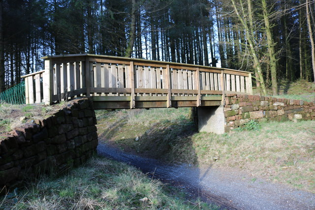 Footbridge in Kirroughtree Forest