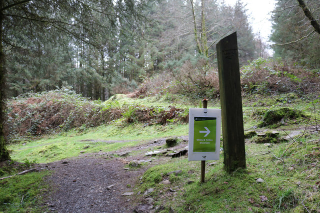 Follow the Arrow, Kirroughtree Forest