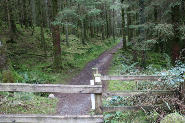 Forest Trail to Bruntis Loch, Kirroughtree Forest