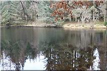 NX4465 : Little Bruntis Loch by Billy McCrorie