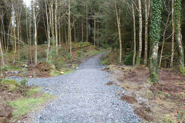Kirroughtree Lade Trail