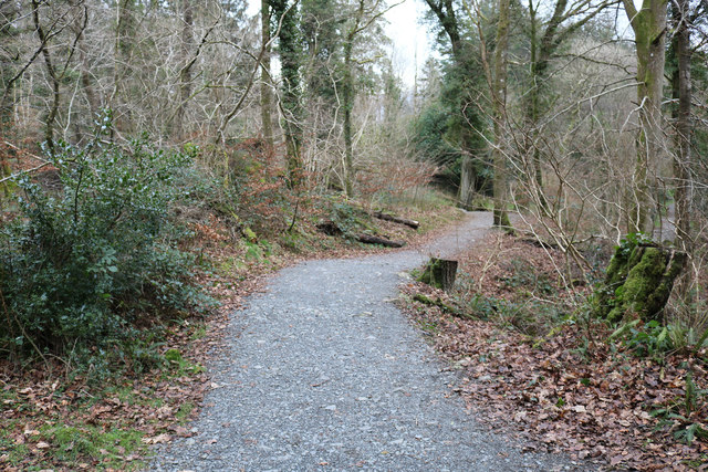 Trail to Kirroughtree Visitor Centre