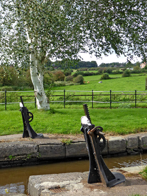 Lock gear and birch tree near Norton-in-the Moors