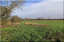 SK5815 : Fields alongside the River Soar by Andrew Abbott